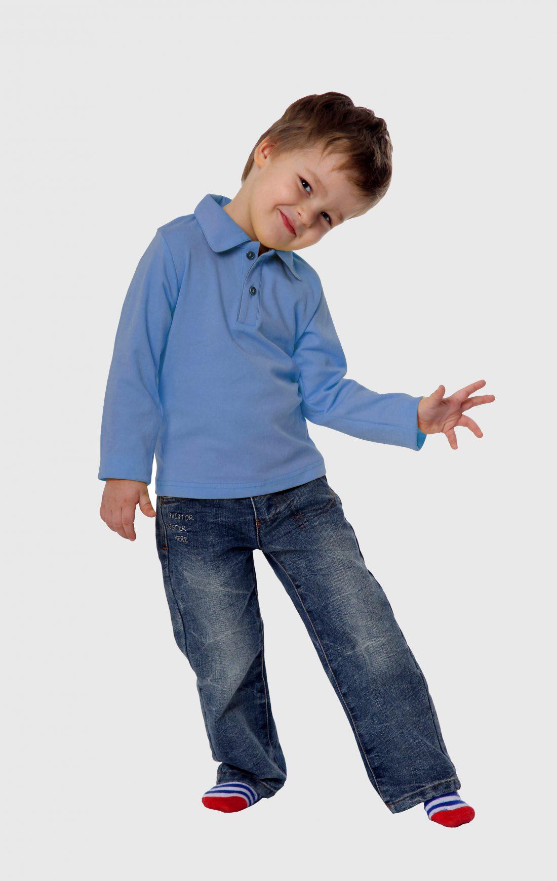 Рубашка-поло KANO Longsleave D голубая купить оптом,