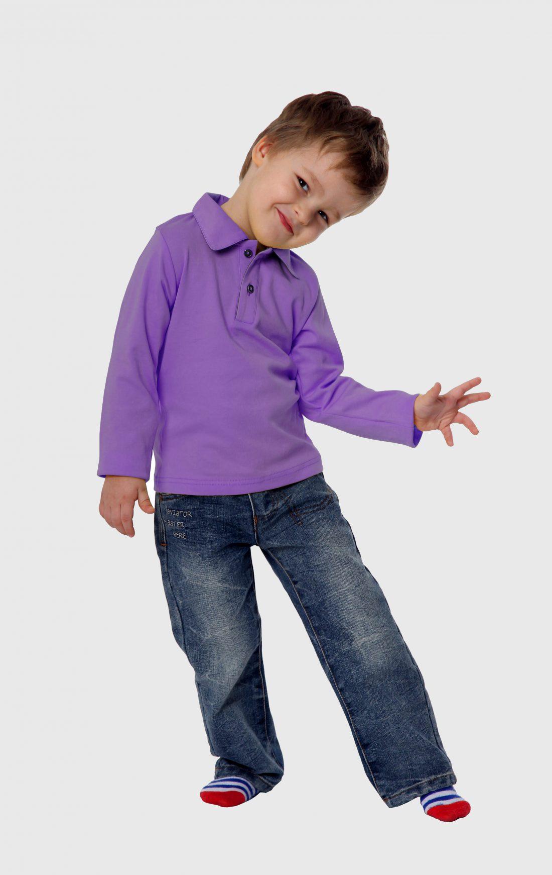 Рубашка-поло KANO Longsleave D сиреневая купить оптом,