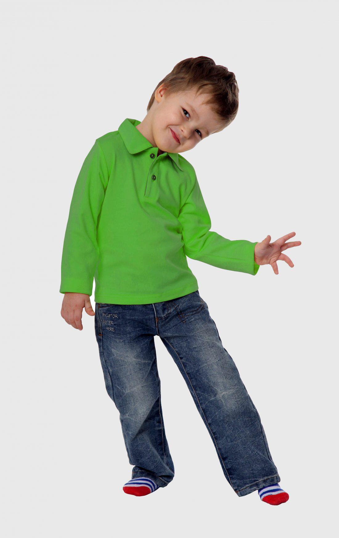 Рубашка-поло KANO Longsleave D цвет: зеленое яблоко купить оптом,